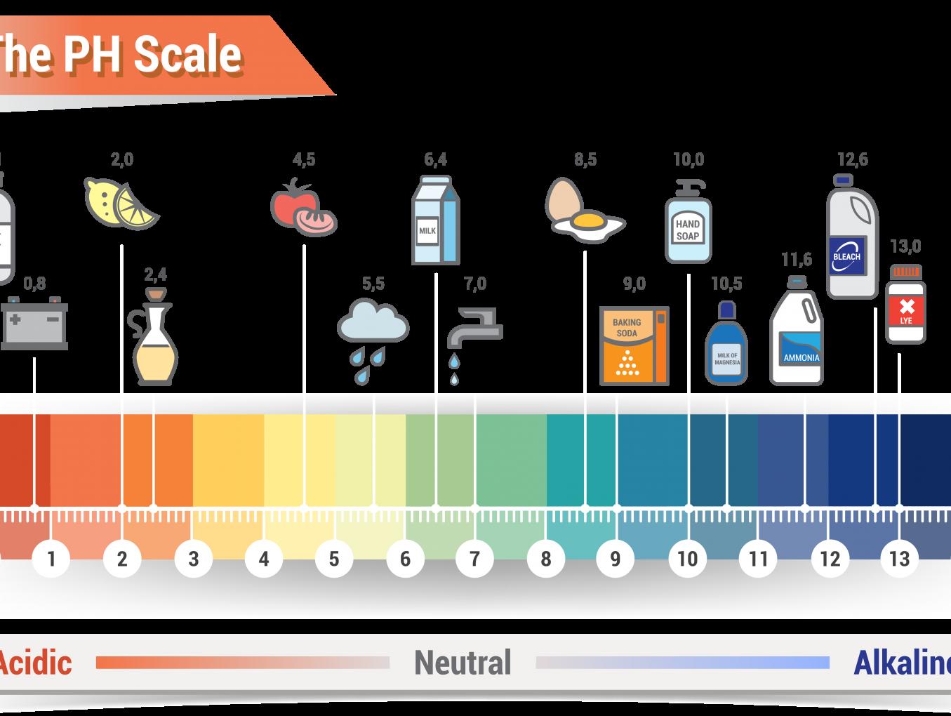 บทความ pH ตัวบ่งชี้ความเป็นกรด-เบส